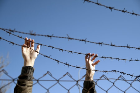 hands reach toward freedom through the barbed wire photo