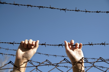 hands reach toward freedom through the barbed wire