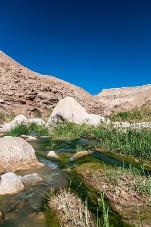 Water flows through the Western Jordan in Wadi Hasa Stock Photo