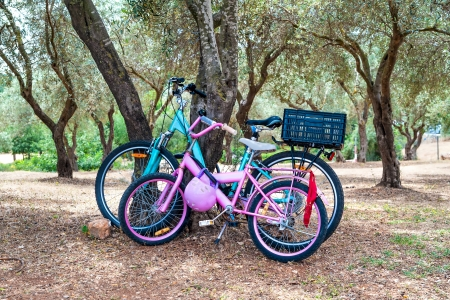 Two parked coloured bicycles in the park photo