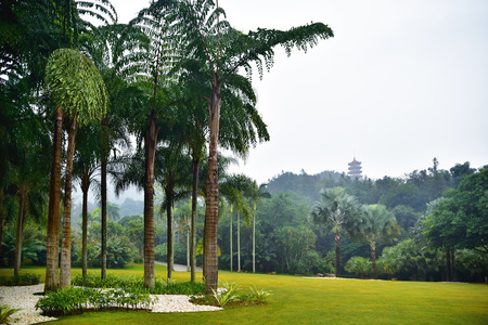 View on pagoda in beautiful park with palms and trees