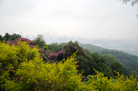 Urban landscape in mist from the mountain top