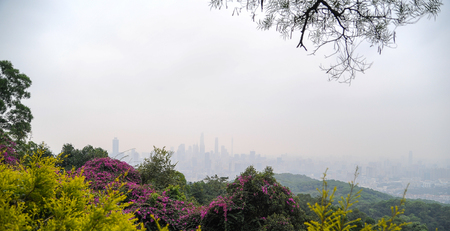 City landscape in mist from the mountain top Stock Photo