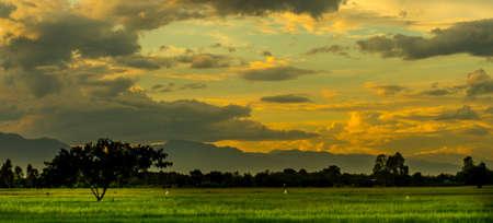 The view Twilight with Sunset  ,horizon 版權商用圖片