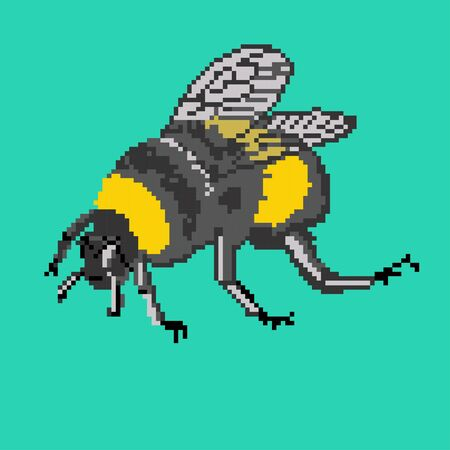 pollinating: Vector illustration bumblebee in pixel art. Pixel bumblebee on blue-green background. Can be used as an icon or an Illustration for sweater, pullover, slip-over, wooly, bag, satchel, carrier bag and others. Illustration