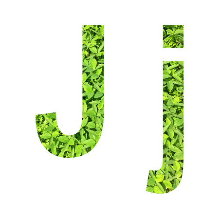 English alphabet �J.j� made from green grass on white background for isolated with clipping path, Capital letter and small letter  from green grass on white background for isolated Stock Photo