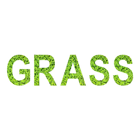 English alphabet of GRASS made from green grass on white background for isolated with clipping path, Capital letter and small letter  from green grass on white background for isolated