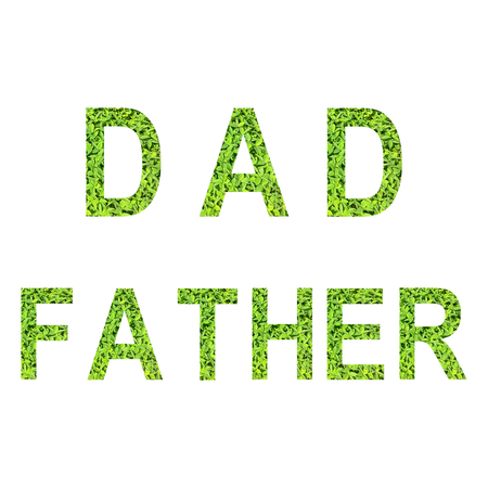 English alphabet of DAD and FATHER made from green grass on white background for isolated with clipping path, Capital letter and small letter  from green grass on white background for isolated