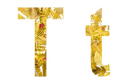 English alphabet of T. made from dry leaves and dry grass on white background for isolated with clipping path, Capital letter and small letter  from dry leaf on white background for isolated