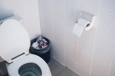 Bathroom Interior With Flush Toilet And Bin And Toilet Paper Awesome Bathroom Paper