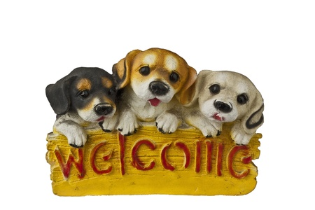 pet with welcome Editorial