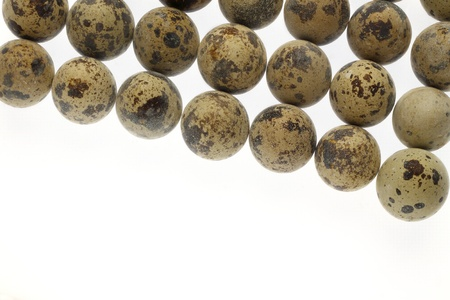 a group of quail eggs on white background photo