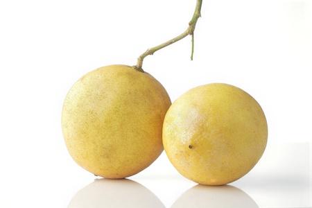 a group of lemon isolated on white background Stock Photo - 15034423