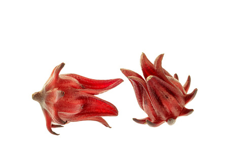 Roselle isolated on the white background