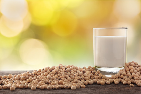 Glass of soy milk and soybean in garden background.
