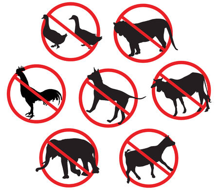 cock duck: Warning signs bovine animals, goats dog duck elephant tiger cock. On the white background.   Illustration