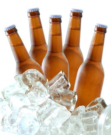 botellas de cerveza: Botellas de cerveza en el hielo