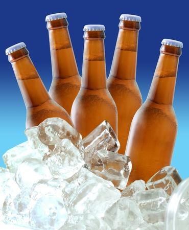 cubetti di ghiaccio: Bottiglie di birra sul ghiaccio Archivio Fotografico