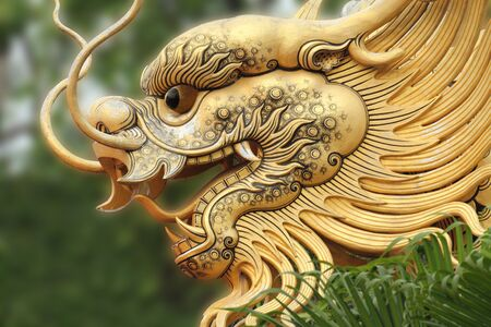 Dragon head in Temple China photo