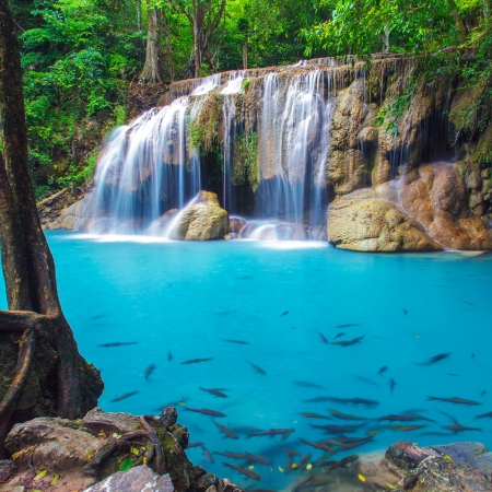 the cascade: Deep forest Erawan Cascada, Kanchanaburi, Tailandia Foto de archivo