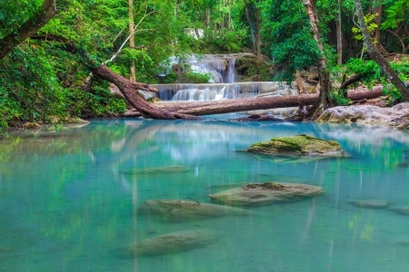 Deep forest Erawan Waterfall, Kanchanaburi, Thailand  Stock Photo - 20815339