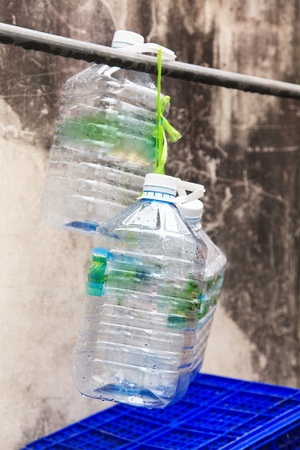 Plastic water bottle for recycling photo