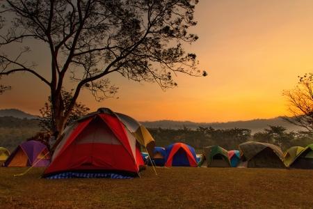 bonfire night: Camping