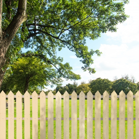 White fences in the garden photo