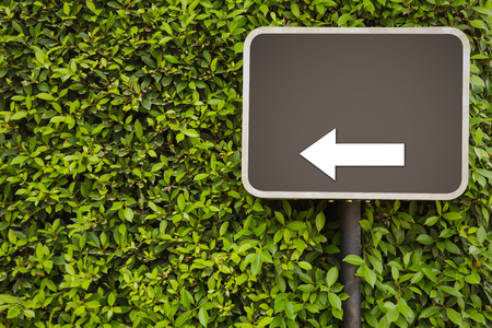Blank Sign with arrow on green leaves wall photo