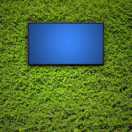 Modern TV screen on green leaf wall photo