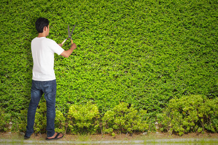 shears: Man gardener cut with clippers Stock Photo