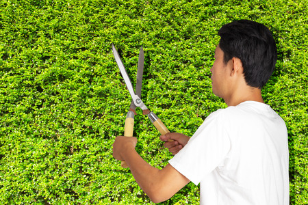 clippers: Man gardener cut with clippers Stock Photo