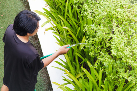 arroser plantes: Watering plants