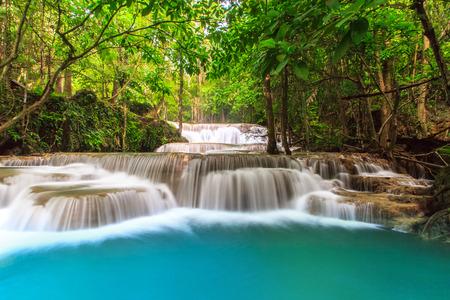 열대 우림에 깊은 숲 폭포 스톡 콘텐츠