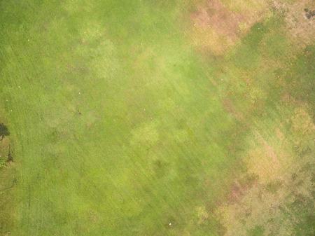 천연 잔디 질감, 공원의 공중보기 스톡 콘텐츠