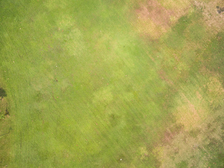 tops: Natural grass texture, Aerial view of park