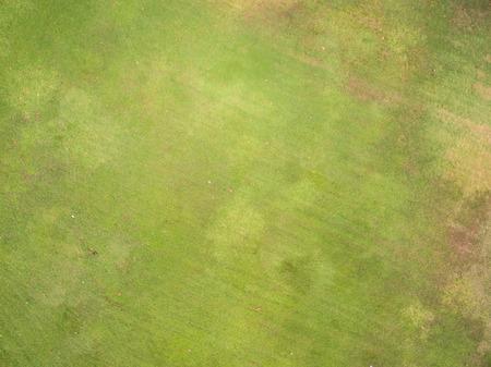 Textura de la hierba natural, vista aérea del parque Foto de archivo - 58399143