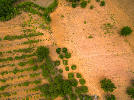 agricultural area: Aerial view of agricultural area in countryside thailand, top view Stock Photo