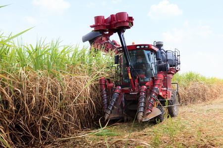 Sugarcane harvester machine