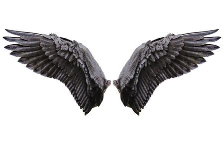 Engelsflügel, natürliches schwarzes Flügelgefieder mit Clipping-Teil