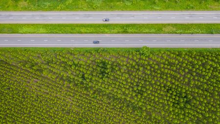 Aerial view of cars and trucks on asphalt road passes through the green forest, Transportation top view
