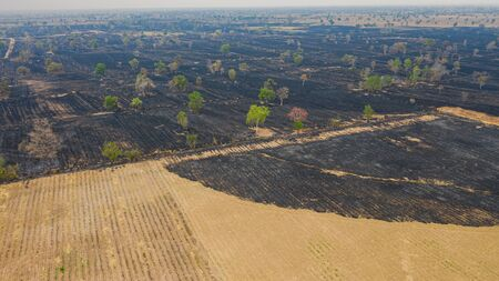 Aerial view over burning rice field after harvesting 版權商用圖片