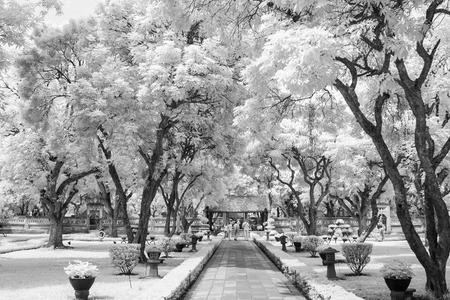 walk way from main entrance of temple of literature take with near infrared camera