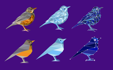 Set of birds in polygon style. Bird from nature (thrush), ice bird and bird made of constellation. Isolated illustration can be used in printing: card, t-shirt, phone case, mug, bag and so on.