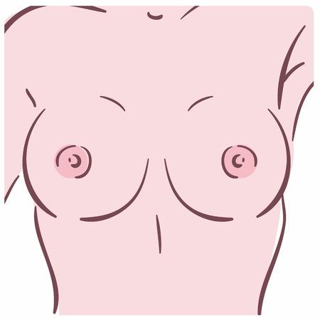 Illustration d'un sein féminin. Peut être utilisé comme symbole de mammologie
