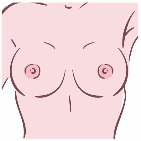 Illustration of a female breast. Can be used as symbol of mammology  イラスト・ベクター素材
