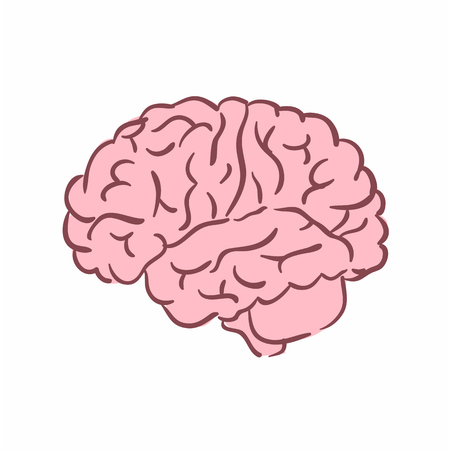 Illustration of a human brain. Can be used as symbol of psychology Illustration