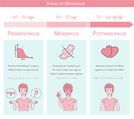 Menopause stages. Medical graphic concept with timeline, text and colorful illustrations. Can be used for your print or web projects