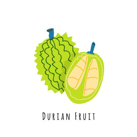 Durian fruit flat vector illustration. Cartoon slices of exotic, tropical fresh fruit. Clipart with typography. Isolated icon for healthy cooking menu, design element