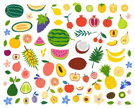 Fruits and berries hand drawn illustrations set. Exotic delicacy slices. Vegetarian food vector drawings pack. Natural dessert isolated cliparts. Juicy dessert, vitamin diet, organic meal  イラスト・ベクター素材